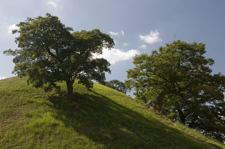 Trees and Hill at Tumuli Park in the city of Gyeongju in South Korea photo