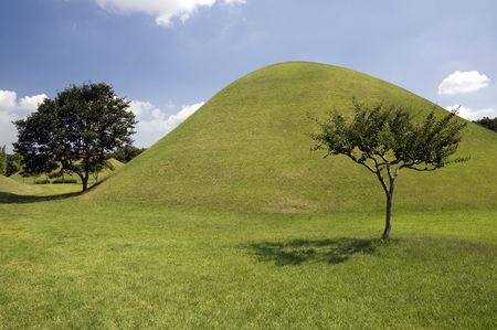Trees and Hill at Tumuli Park in the city of Gyeongju in South Korea