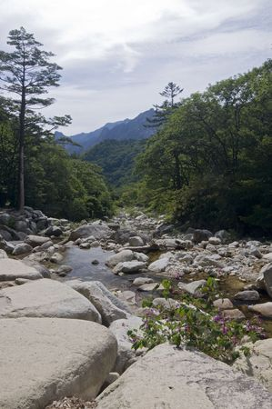 River in the Seoraksan National Park,South Korea photo