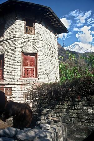 tibetan house: Tibetan House, Nepal