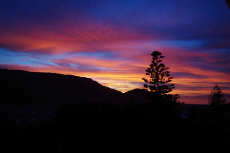 Fire in the Sky at Sunrise with lonely tree silhouette on black mountain