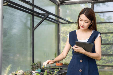 Young cute asian woman working in house plant. Asian female gardener using a tablet to record and capture the growth of trees in greenhouse. Startup small business work from home concept.