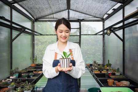 Asian woman Gardener working in houseplant. Owner start up small business  greenhouse. Cute Female holding small tree in pot and smiling in houseplant stay at home.