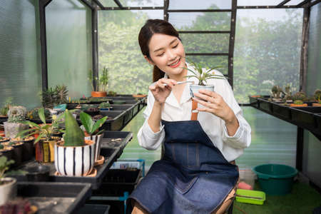 Beautiful cute female asian Gardeners are preparing small planters, use small tongs, pick up the stones to decorate the pots. Prepare the soil and pots for planting trees.