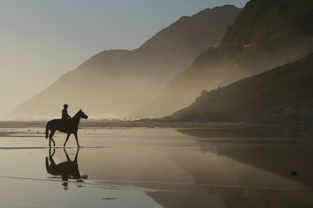 chapmans: Horse on Noordhoek Beach Stock Photo