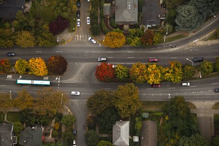 Autumn trees changing color along street in Washington