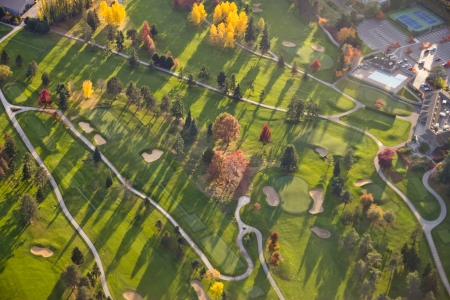 Abstract aerial view of bright colored trees casting shadows over the fairways