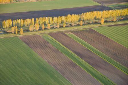 フィールドと行の作物と収穫された区域の航空写真ビュー