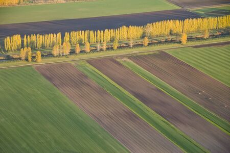 Aerial view of fields and lines of crops and harvested areas