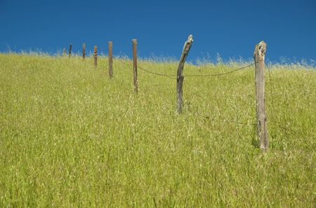 An old barbed wire fence stands alone in the grass photo