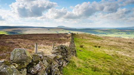 A landscape image of a dry stone wall traversing Irish moorland with Mount Slemish in the distance.