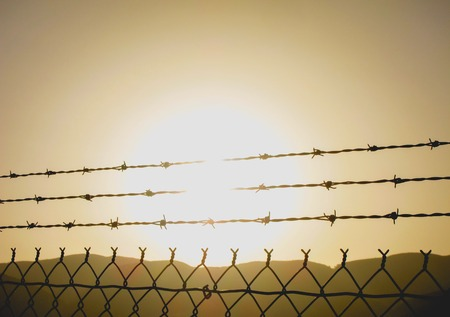 golden sun setting through barbed wire