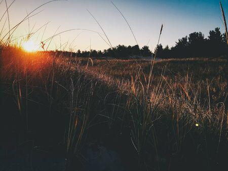 hipster sunset background