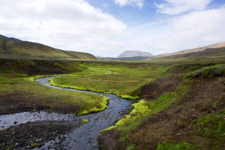 river with bright green grass Iceland landscape Stock Photo