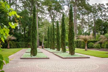 April 2017, Houston, Texas: A Woman Enjoys The Mercer Arboretum ...