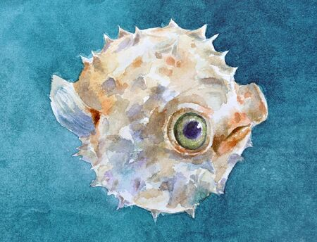 pufferfish: Watercolor balloonfish with green eyes