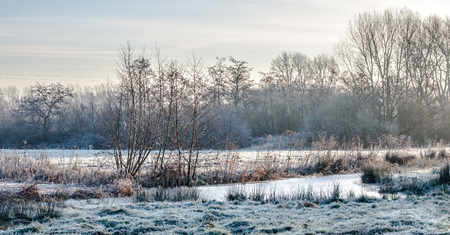 Frozen marsh lands in a winter landscape 写真素材