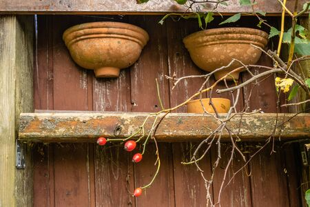 Old wooden rack with hanging teracotta flower pots
