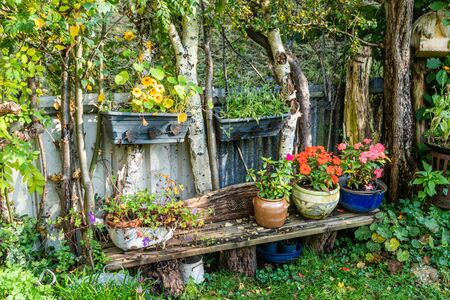 Bench with colourful flowerpots between the birches fence