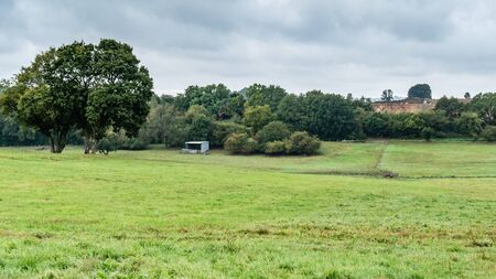 Countryside landscape with trees and meadows. Breinig DE Editorial