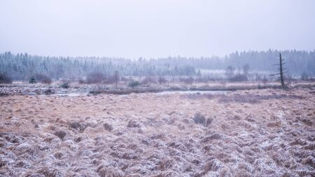 High Fens landscape touched by a tiny layer of snow