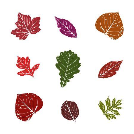 Autumn leaves set. Vector illustration 일러스트