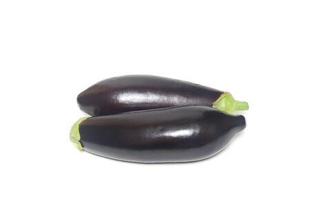plants species: Eggplant species of perennial herbaceous plants