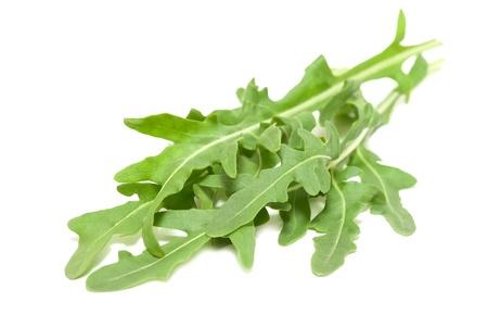 Fresh Arugula leaves on a white background photo