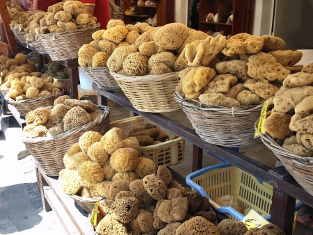 Natural sea sponges     the main trade item of Symi