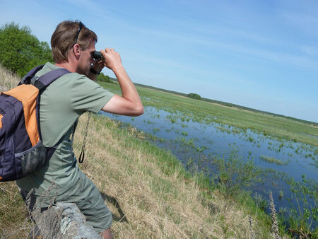 Birdwatching in Biebrza Wetlands Stock Photo