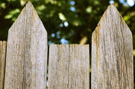 Top points of old wooden fence with cracks