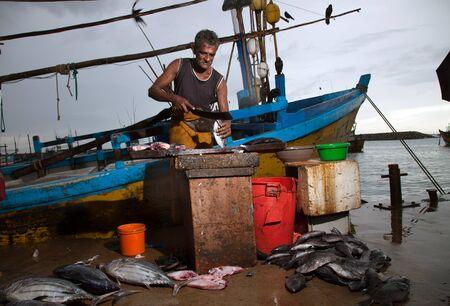 The man at the fish market in Sri Lanka cut up the fish