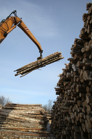 The auto-loader works in a warehouse of logs Standard-Bild