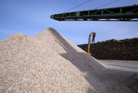 sawdust: The mountain wood chips on a wood stock is replenished by loader
