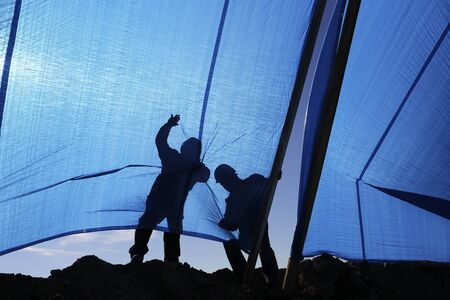 Workers pull a fabric screens to protect from the sun Standard-Bild