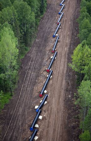 The pipes prepared for the laying of the pipeline Standard-Bild