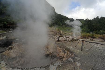 Furnas fumaroles, hot water spring in San Miguel (Sao Miguel), Azores