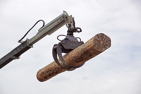 A Powerful Tree Logger Lifting Crane Stock Photo