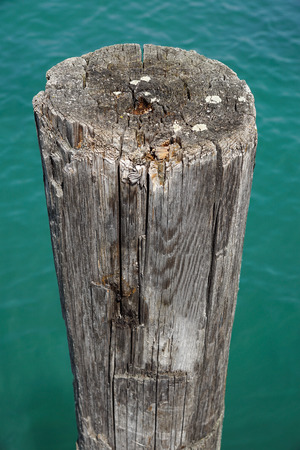 Old pier poles Stock Photo