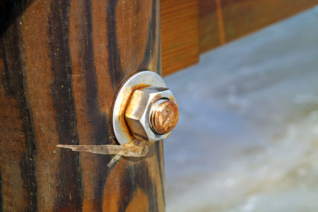 bolts and nuts: image of the wood, the bolt, nut in the pier at sea