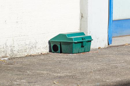 벽 근처 바닥에 독 고양이 쥐 함 상자 스톡 콘텐츠