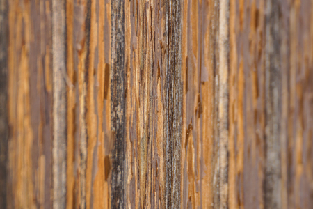 Close up of wooden jetty . wooden board for walk . selective focus Stock Photo