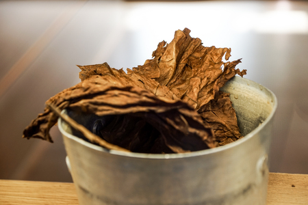 Overhead shot of finest tobacco as a background Stock Photo