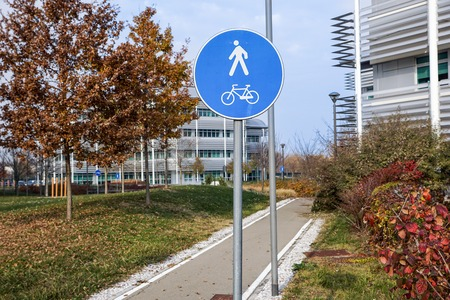road for pedestrians and bicycles, sunny park