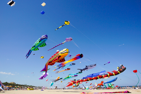 Various kites flying on the blue sky in the kite festival .