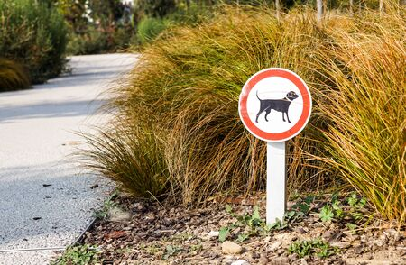 Dogs Not Permitted Sign on a Track in a Park . Stockfoto