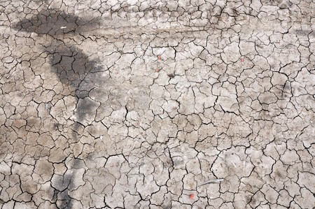 dirt on ground: a close up of a dirt ground, dry land, texture, background. Stock Photo