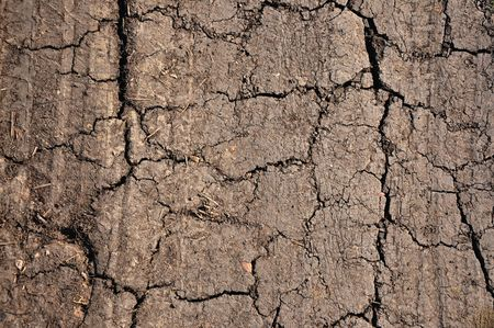 a close up of a dirt ground, dry land, texture, background. Stock Photo - 4638971