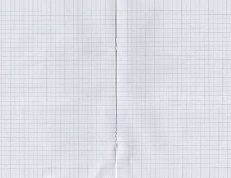 Close up image of a notebbok pages with grid lines. Stock Photo - 5849216