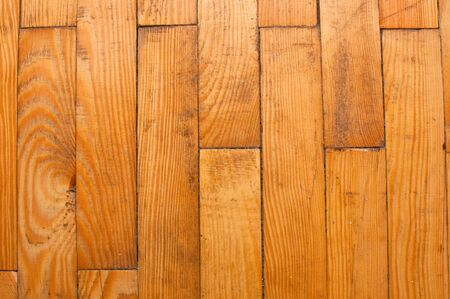 Seamless pine tree floor texture, old and obsolete photo